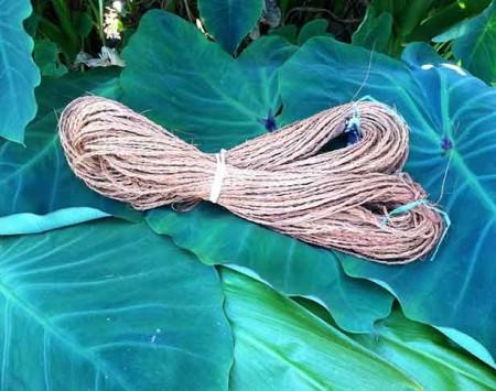 Coconut-Sennit---Fijian